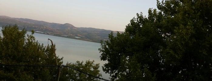 Avşar Barajı is one of themaraton.