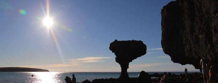 Playa Balandra is one of Orte, die Anna gefallen.