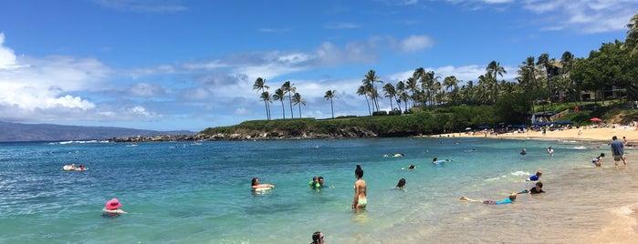 Napili Beach is one of Orte, die Omkar gefallen.