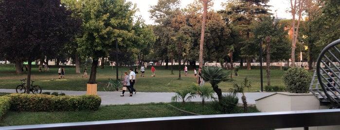 Parku Rinia is one of Lugares favoritos de Erkan.