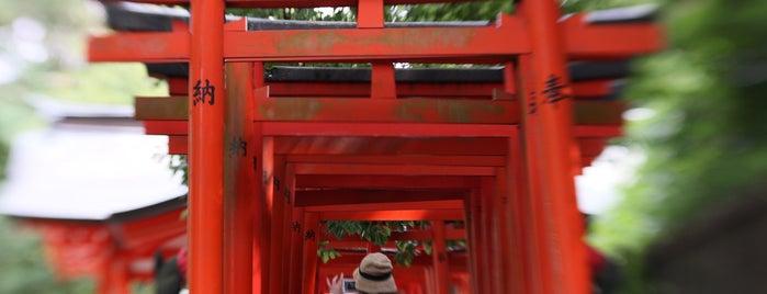 Nezu-jinja Tsutsujien Garden is one of Posti che sono piaciuti a Nonono.