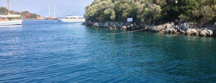 Zeytin Adası is one of Lieux qui ont plu à Ayşem.