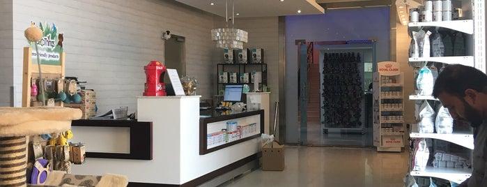 Cloud 9 Pet Hotel & Care is one of สถานที่ที่ Adel ถูกใจ.