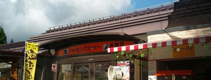 西紀SA (上り) is one of Lugares favoritos de Shigeo.
