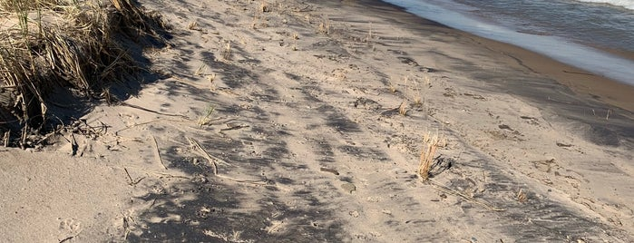 Indiana Dunes National Park is one of National Recreation Areas.