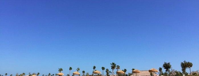 Banana Island Beach is one of Qatar.