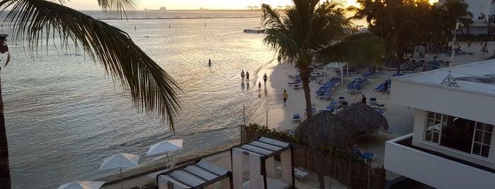 Be Live Hamaca Hotel is one of Luis : понравившиеся места.