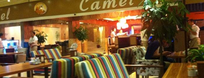 Camel Cafe & Bistro is one of Locais curtidos por Dell.