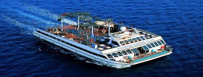 Club Catamaran is one of Bodrum Gece Hayatı.
