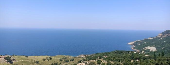 Tepeköy Çınaraltı is one of Gökçeada.