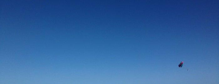 Royalton Beach is one of Yulia 🐾 : понравившиеся места.