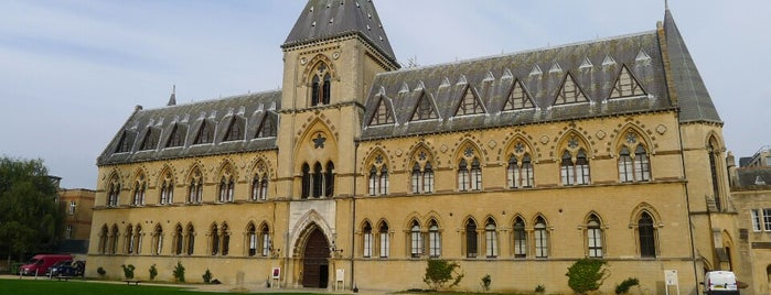 Oxford University Museum of Natural History is one of London 🇬🇧.