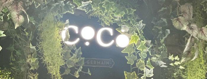 Coco is one of Tempat yang Disimpan Kübra.