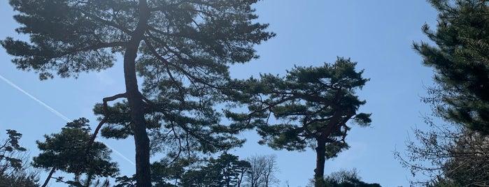 홍련암 (紅蓮庵) is one of South Korea.