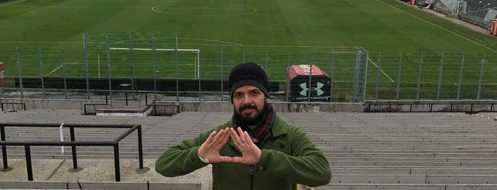 Estadio Monumental David Arellano is one of Tempat yang Disukai André.