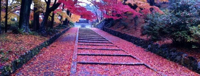 毘沙門堂 is one of Kansai Trip.