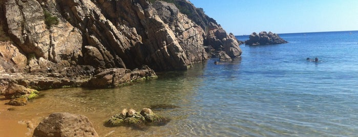 Platja de Castell is one of Playas de España: Cataluña.