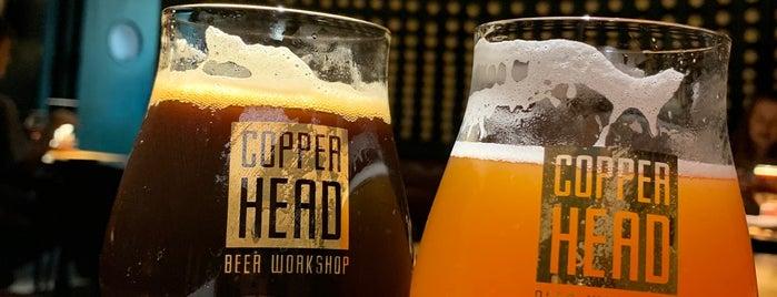 Copper Head. Beer workshop is one of Ivano-Frankivsk.