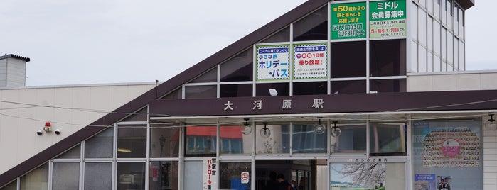 Ōgawara Station is one of JR 미나미토호쿠지방역 (JR 南東北地方の駅).