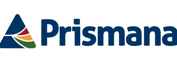 Prismana is one of Patrick's Picks.