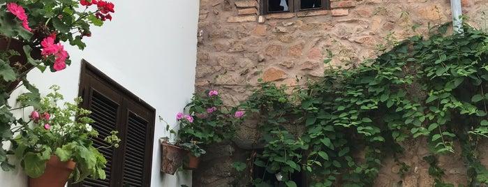 La Puerta Falsa is one of Lieux qui ont plu à Fernando.