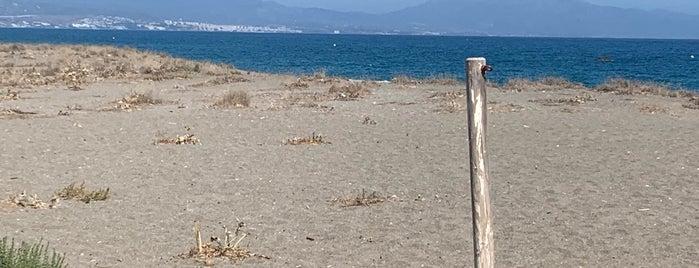 Playa Manilva Beach is one of Marian'ın Beğendiği Mekanlar.