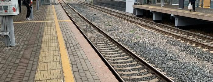 Станция МЦК «Стрешнево» is one of สถานที่ที่ Vlad ถูกใจ.
