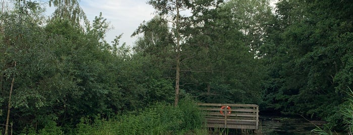 Greenwich Peninsula Ecology Park is one of 1000 Things To Do In London (pt 2).