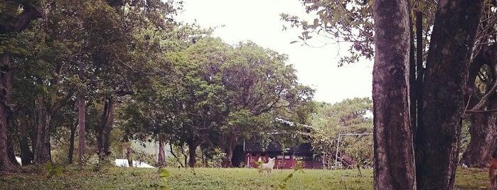 DENR Ecological Park & Training Center is one of Orte, die Christian gefallen.