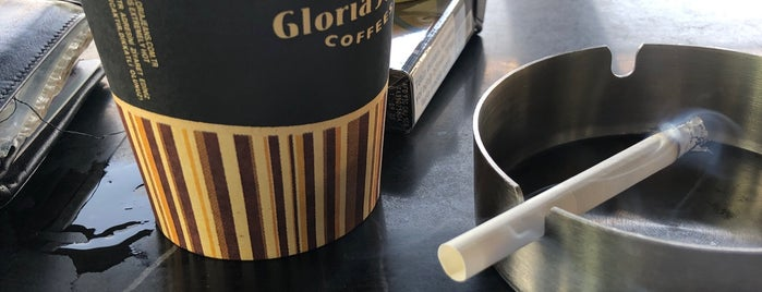 Gloria Jean's Coffee's is one of Dilekさんのお気に入りスポット.