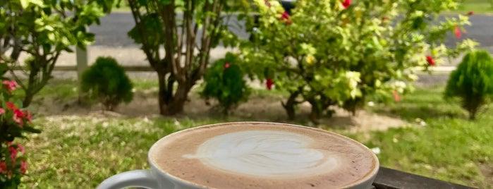 Cafe Aitutaki is one of EmiliyaM : понравившиеся места.