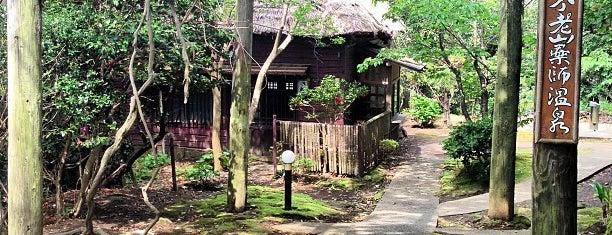 不老山薬師温泉 安房自然村 is one of 風呂.