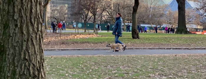 Central Park Basketball Courts is one of NY.