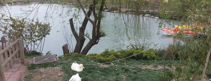Bakırköy Botanik Parkı is one of Posti che sono piaciuti a Özlem Bayrak👑.