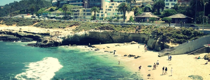 La Jolla Beach is one of Orte, die Dustin gefallen.