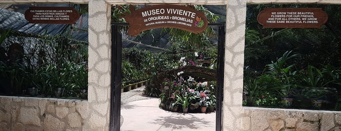 Museo Viviente is one of Lieux qui ont plu à Mel.