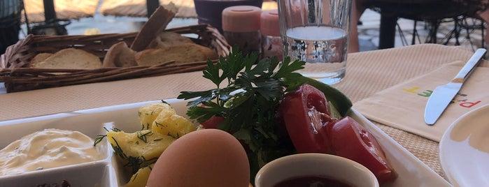 Palet Cafe & Kahvaltı Evi is one of Orte, die Gulsen gefallen.