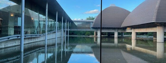 田中一村記念美術館 is one of Lugares favoritos de Shigeo.