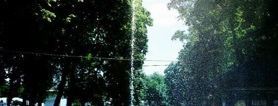 Фонтан у парку Шевченка is one of Orte, die Alex gefallen.