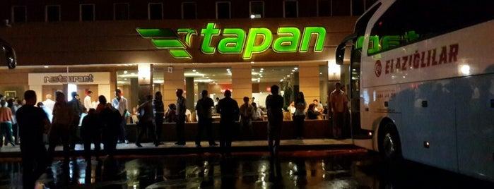 Tapan Tesisleri is one of Lugares favoritos de Oral.