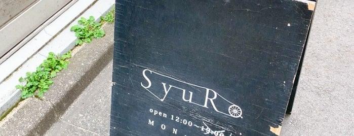 SyuRo is one of 2017行きたい場所.