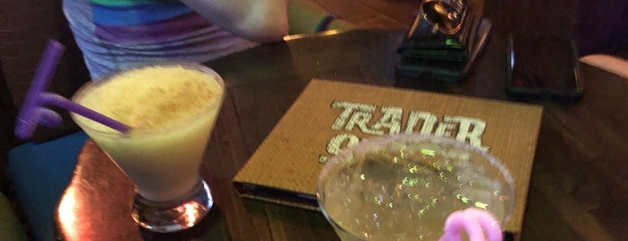 Trader Sam's Grog Grotto is one of สถานที่ที่ Michael Dylan ถูกใจ.