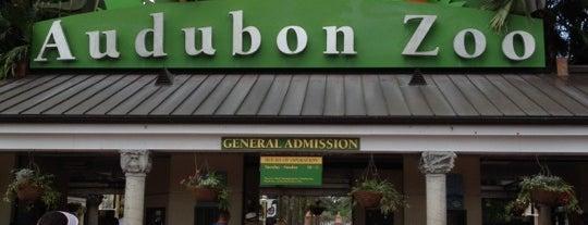 Audubon Zoo is one of Life's a Zoo.