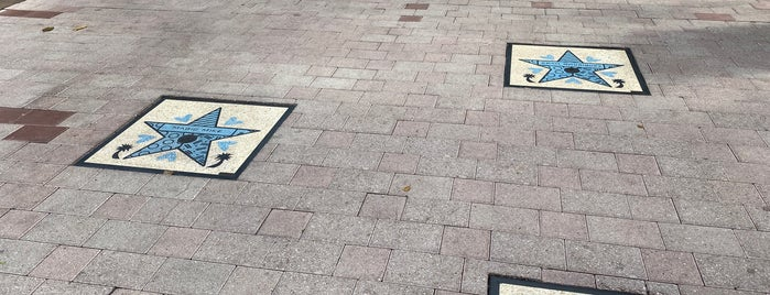 Miami Walk of Fame is one of MIAMI.