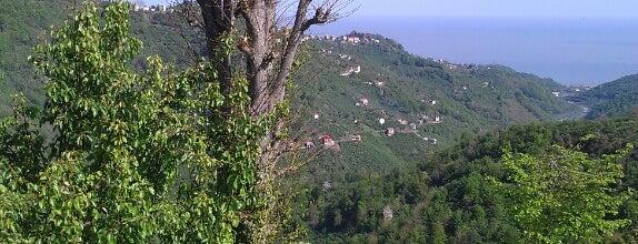 Haydarlı Köyü is one of Özel.