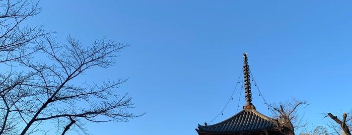喜多院 多宝塔 is one of 川越.