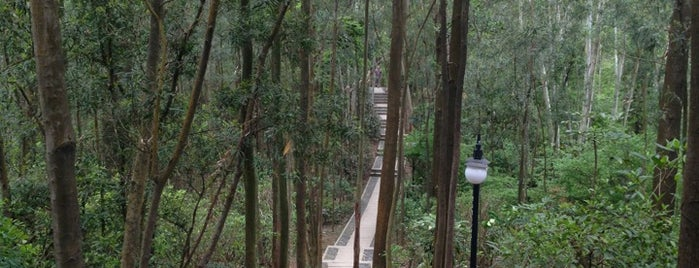 Lianhua Hill Park is one of Shenzhen.