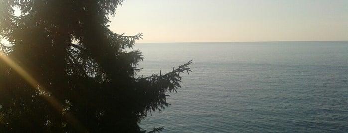 Hancıoğlu Çamburnu Tesisleri is one of Orte, die Büşra gefallen.