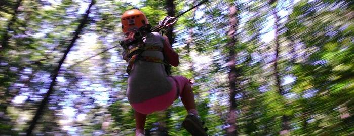 Challengeland Kalandpálya - Csillebérc is one of mazsom@gmail.com.