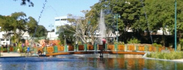 Parque Santos Dumont is one of Sao José.